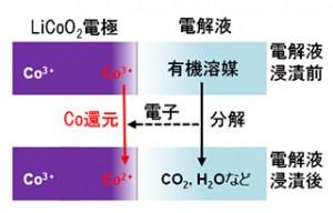 電解液浸漬による電極最表面コバルト種の還元挙動